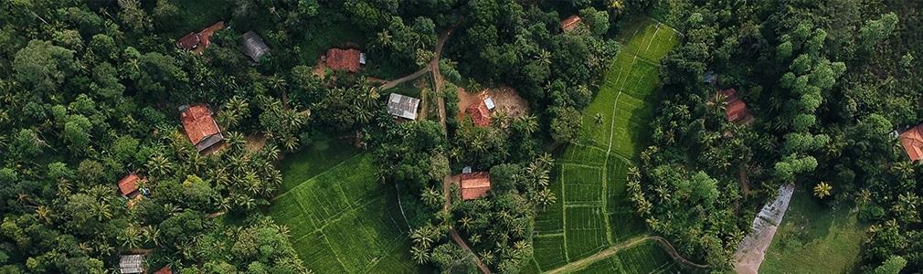 Am Land in Sri Lanka